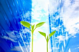 Organisations are striving to be greener