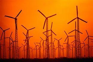 Reaching towards a green future